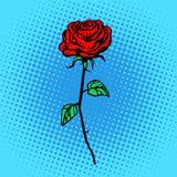 Blumenrot-Rosenstamm mit den Dornen stock abbildung