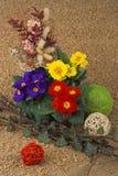 Blumenruhestand stockbild