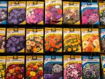 Blumensamen-Paket-Verkauf Stockfoto