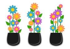 Blumensammlung stockfotografie