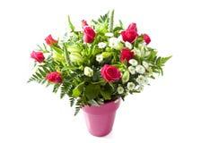 Blumenschönheit stockfoto