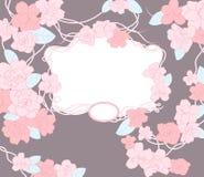 Blumenschablone. Stockfotos