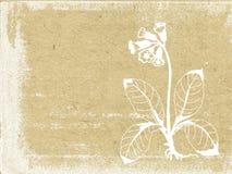 Blumenschattenbild Stockfoto