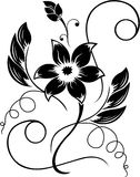 Blumenschwarzes ein weißes Muster Lizenzfreies Stockfoto