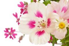 Blumenseitengrenze stock abbildung
