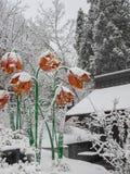 Blumenskulptur umfasst mit Schnee Lizenzfreie Stockfotografie