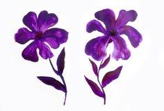 Blumensommerdesign mit handgemalter Zusammenfassung blüht purpurrote Farben auf weißem Hintergrund Lizenzfreie Stockfotos