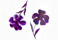 Blumensommerdesign mit handgemalter Zusammenfassung blüht purpurrote Farben auf weißem Hintergrund Stockfoto