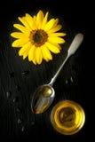 Blumensonnenblume und -Färberdistelöl in einem Löffel Stockfotografie
