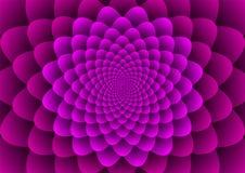 Blumenspiralen purpurrot Lizenzfreies Stockbild