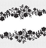 Blumenspitzegrenze Stockfotos