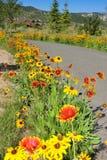 Blumenspur Stockfotografie