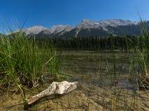 Blumenstein und -berg in der Front und hinter einem See stockfotografie