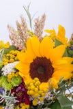 Blumensträuße von Blumen und von Kräutern Lizenzfreie Stockbilder