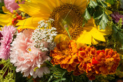 Blumensträuße von Blumen und von Kräutern Lizenzfreie Stockfotos