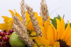 Blumensträuße von Blumen und von Kräutern Stockfotografie