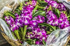 Blumensträuße von den purpurroten und weißen Orchideenblumen, die an gestapelt werden, zeigen a an Lizenzfreies Stockbild