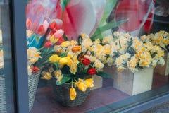 Blumensträuße von gelben Narzissen und von roten Tulpen stehen in den Blumenbeeten auf einem Glasschaukasten lizenzfreies stockfoto