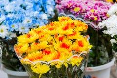 Blumensträuße von mehrfarbigen Chrysanthemen werden an einem Straßenmarkt verkauft Gelbe, blaue, rote, purpurrote Blumen lizenzfreies stockfoto