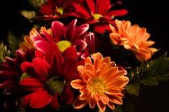 Blumenstrauß 2 Lizenzfreies Stockfoto