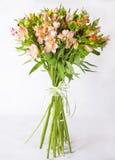Blumenstrauß Alstroemeria auf einem hellgrauen Hintergrund Stillleben mit buntem Alstroemeria Neuer Alstroemeria Platz für Text B Stockfotos