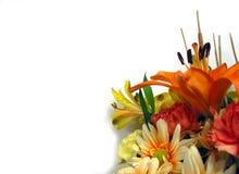 Blumenstrauß auf weißem Hintergrund lizenzfreie stockfotos