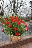Blumenstrauß am Denkmal lizenzfreie stockfotografie