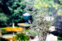 Blumenstrauß der Blume ist in einem Glaskrug auf dem Tisch Lizenzfreie Stockfotografie