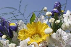 Blumenstrauß der Blumen Lizenzfreie Stockbilder