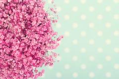 Blumenstrauß der Blumen des rosa Babys Stockbild