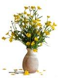 Blumenstrauß der Butterblumeen Stockbild