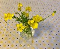 Blumenstrauß der Butterblumeen Stockfotos