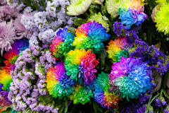 Blumenstrauß der Chrysanthemennahaufnahme Stockbild