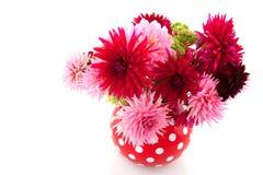 Blumenstrauß der Dahlien Stockfotos