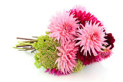 Blumenstrauß der Dahlien Lizenzfreie Stockbilder