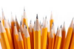 Blumenstrauß der eben geschärften Bleistifte Lizenzfreies Stockbild