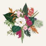 Blumenstrauß der exotischen Blumen stock abbildung