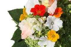 Blumenstrauß der Farbensommerblumen Lizenzfreie Stockfotografie