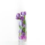 Blumenstrauß der Frühlingsblumen Stockbild
