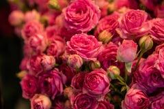 Blumenstrauß der frischen Rosen stockbild