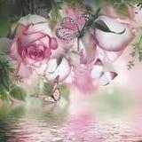 Blumenstrauß der frischen Rosen stockfotos