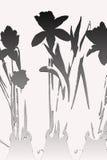 Blumenstrauß der gelben Narzissen-Plakat-Kunst lizenzfreies stockbild