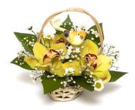 Blumenstrauß der gelben Orchideen Stockfoto