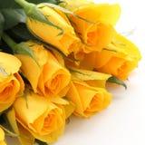 Blumenstrauß der gelben Rosen auf weißem Hintergrund Lizenzfreie Stockbilder