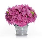 blumenstrau der roten hortensie und der dunkelblauen magnolie in einem vase stockfoto bild. Black Bedroom Furniture Sets. Home Design Ideas