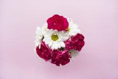 Blumenstrauß der Kamille und der Gartennelke auf einem rosa Hintergrund Flache Lage Lizenzfreie Stockfotos