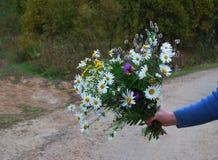 Blumenstrauß der letzten herbstlichen Wildflowers Lizenzfreies Stockfoto