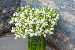 Blumenstrauß der Maiglöckchennahaufnahme stockfoto