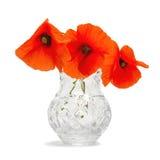 Blumenstrauß der Mohnblumen Stockfotos