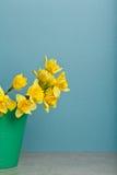 Blumenstrauß der Narzisse auf blauem backgroung Stockfotografie
